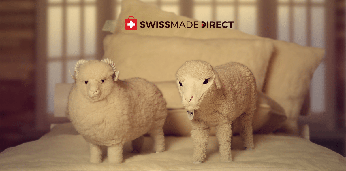 the-benefits-of-merino-wool-vs-cashmere-swissmade-direct