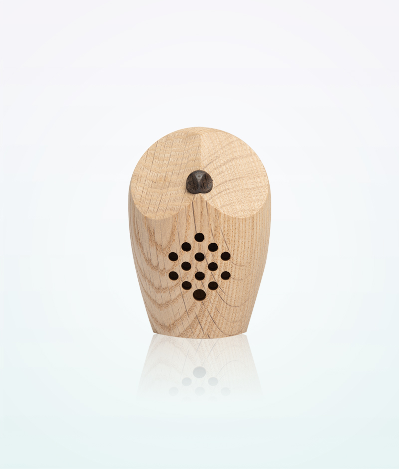 forest-sounds-relax-melodies-motion-sensor